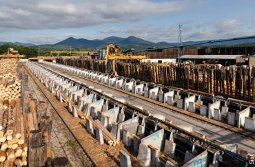L'industrie du bois va continuer à se concentrer